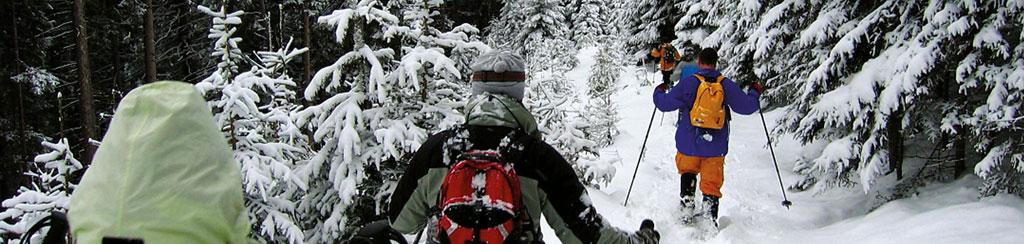 Teamevent, Teambuilding und Betriebsausflug im Winter